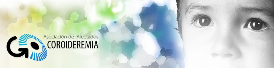BANNER COROIDEREMIA